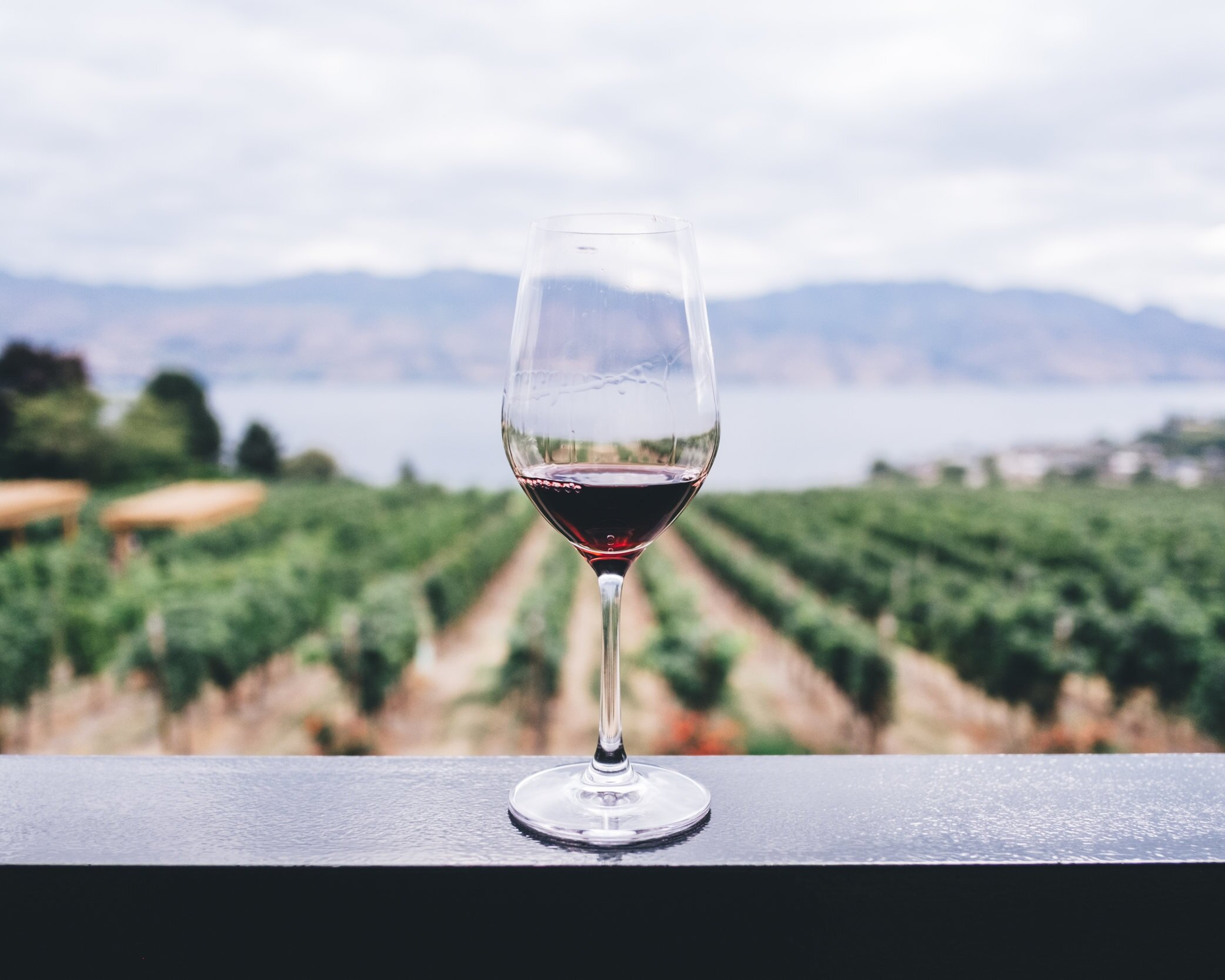 What is the difference between fine and regular wine?