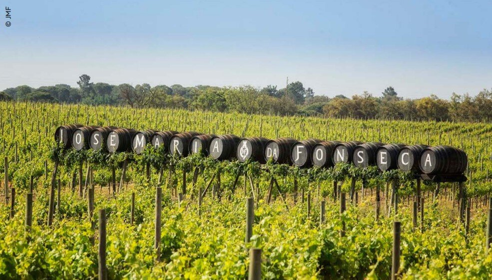 In the fine wine world, passion and hard work pay off for generations