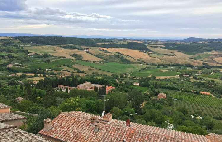 Why invest in fine wines from Tuscany, the most famous Italian wine region