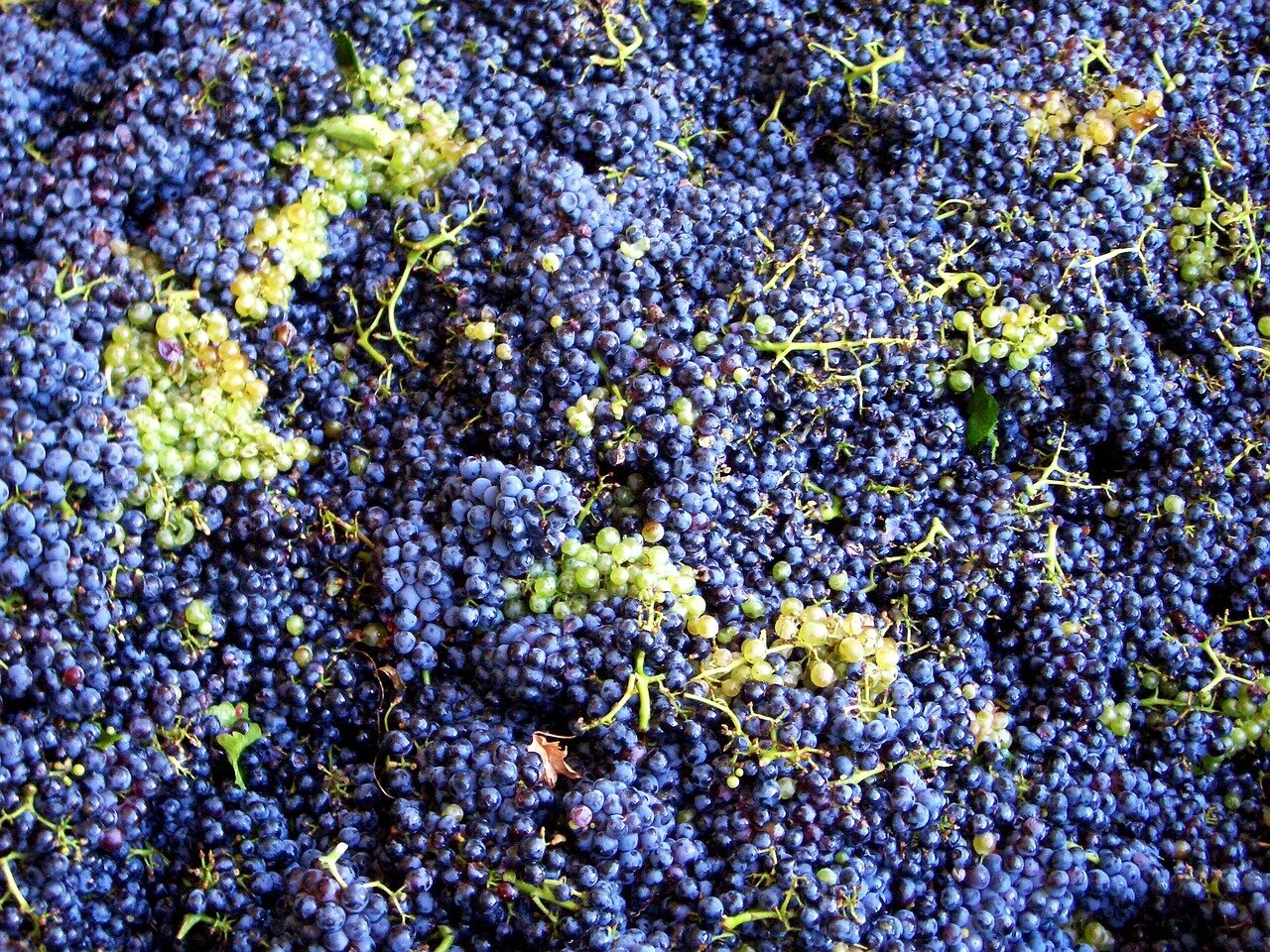 The most famous and trendy wine blends in the world